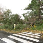 Storm Damage Restoration in Salisbury, North Carolina