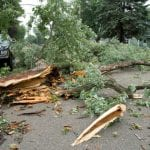 Wind Damage in Salisbury, North Carolina